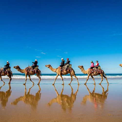 Camel-surfing-on-Lighthouse-Beach-by-Lindsay-Moller
